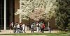 Spring Campus Photos 4 18 11 Hebard-12