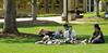Spring Campus Photos 4 18 11 Hebard-17