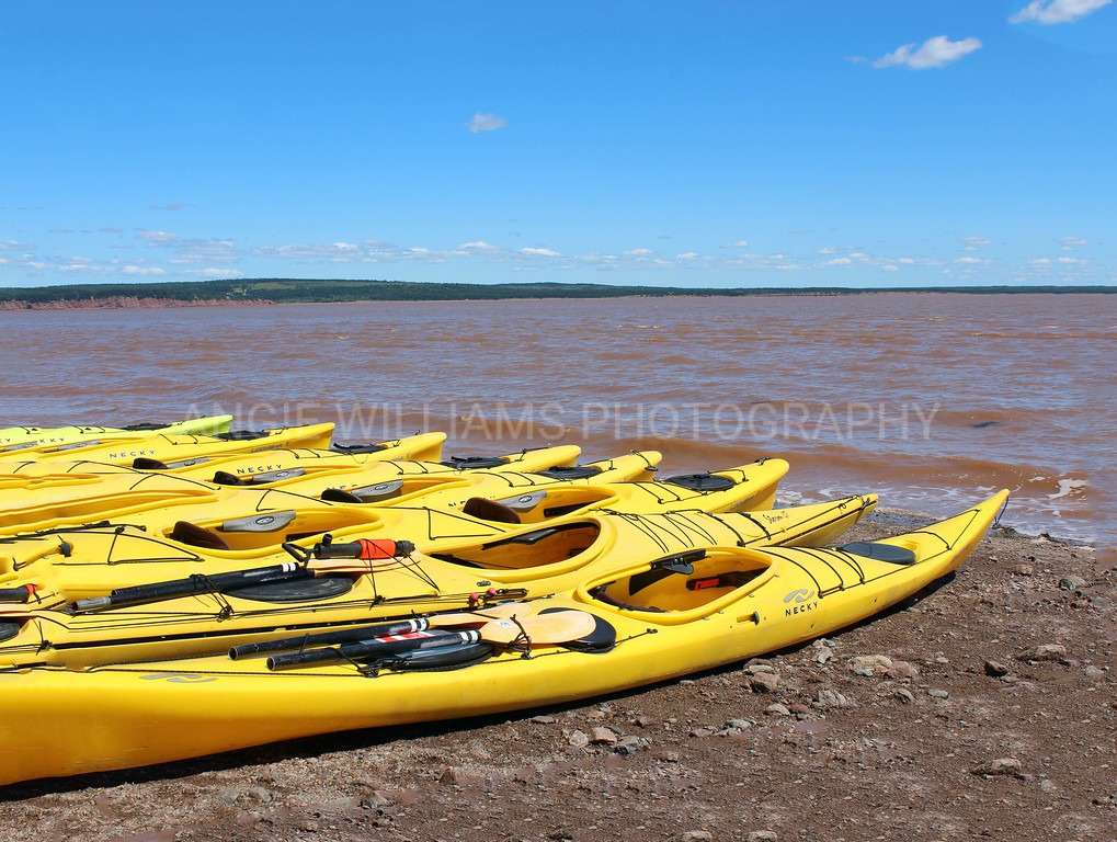 Yellow Kayaks, Hopewell Rocks
