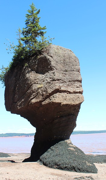 ET at Hopewell Rocks