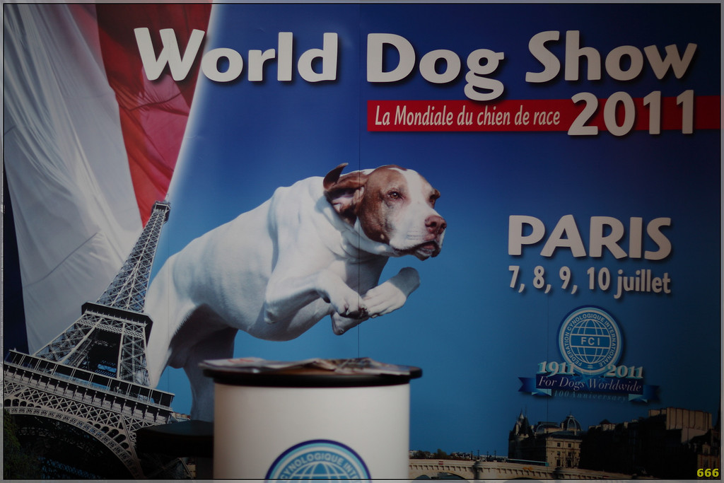IMAGE: http://photos.corbi.eu/Other/Canon-85L12II-Dog-Show/IMG0610good/930788764_vgp7C-XL.jpg