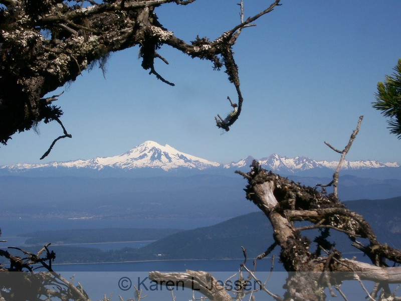 Mount Baker from Mount Constitution<br /> <br /> This is the highest point in the San Juan Islands