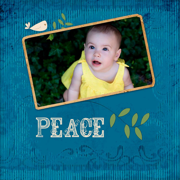 peace front