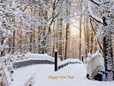 Cards New Year & Christmas / Kerst- & nieuwjaarskaarten