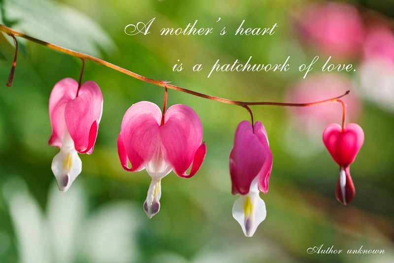 A mother's heart is a patchwork of love