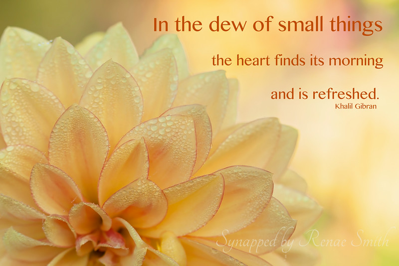 In the dew of small things...