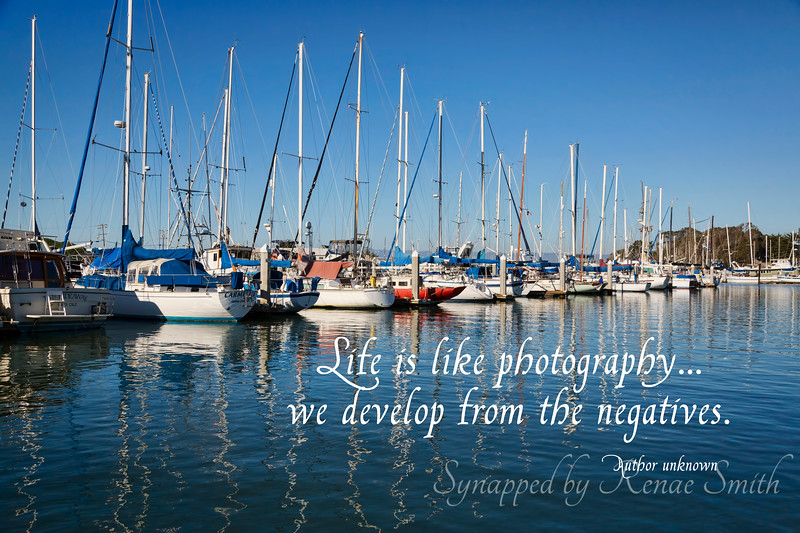 Life is like photography... we develop from the negatives.
