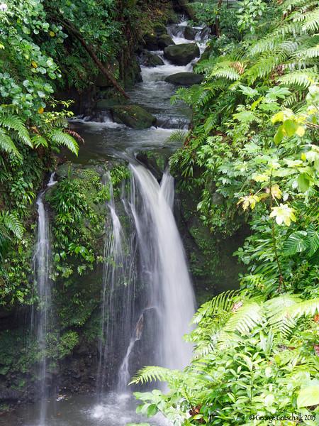 Hibiscus Falls, Dominica