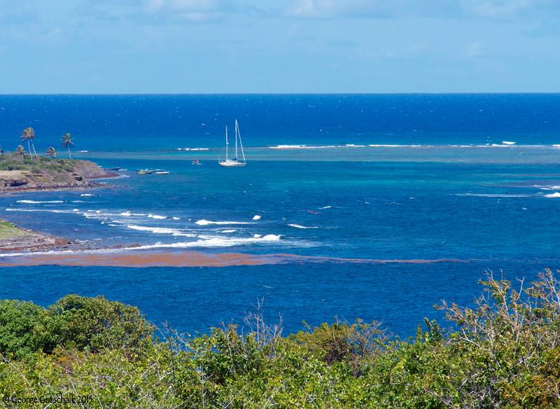 St Kitts Coastline
