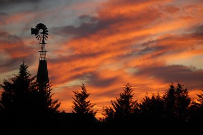 Windmill Sentry