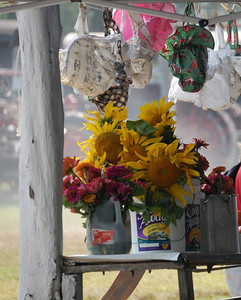 Signs of Summer - Federalsburg Steam Show