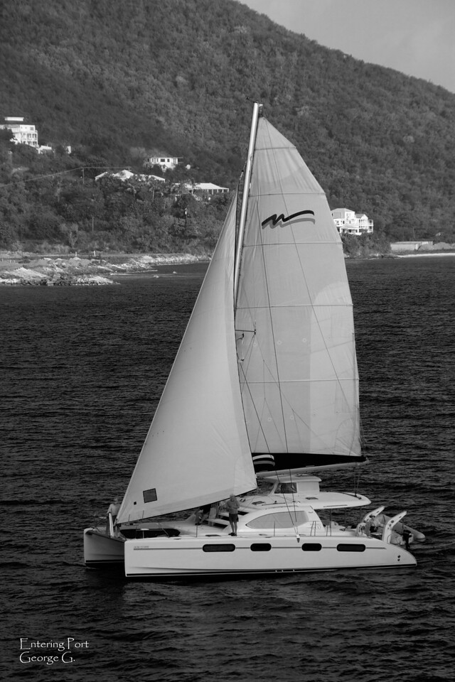 Black and White catamaran.