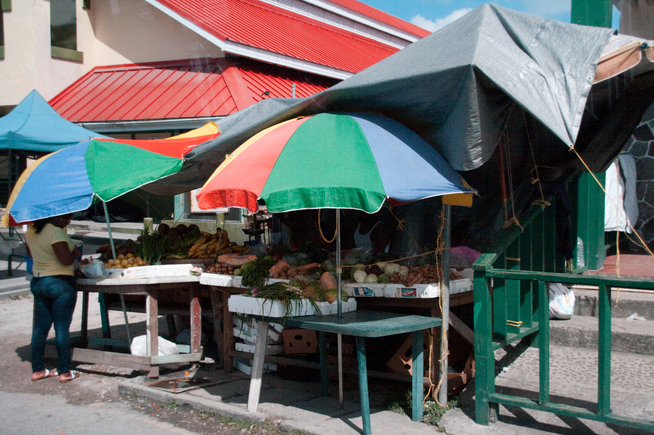 Market Umbrellas at St. Martin