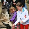 It looks like feeding the goats is fun.