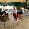 Ava on the pony.