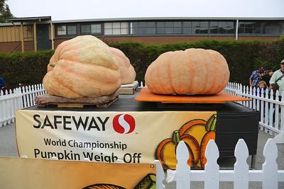 Some giant pumpkins at the Half Moon Bay Pumpkin Festival.
