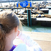 Ava holding her nose while looking at the California Sea Lions at Pier 39.  They smelled pretty bad.