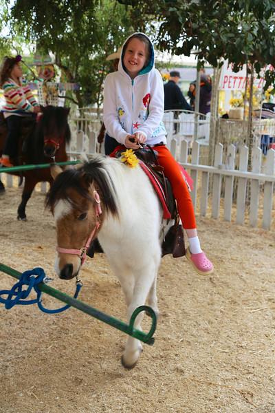 Ava on a friendly pony.
