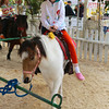 Ava on a friendly pony.