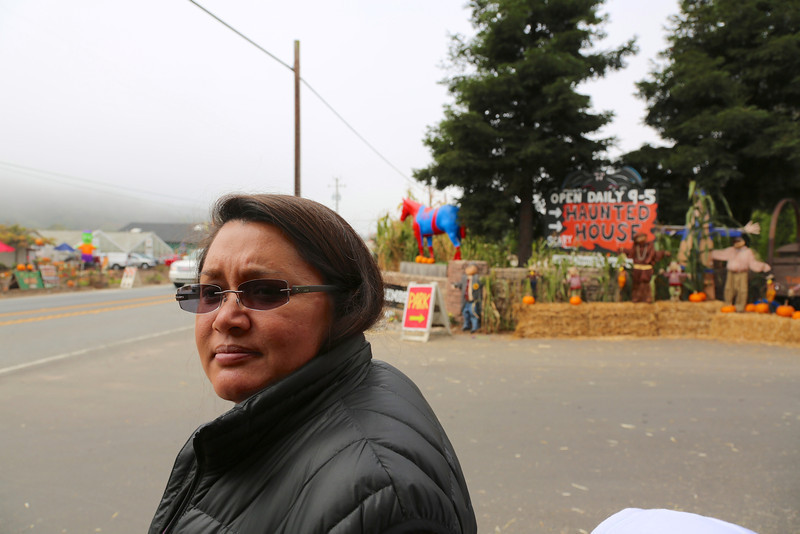 We were waiting to cross the street to go to another pumpkin patch.  Notice the spider horse in the background.