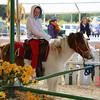 Ava enjoying the pony ride.