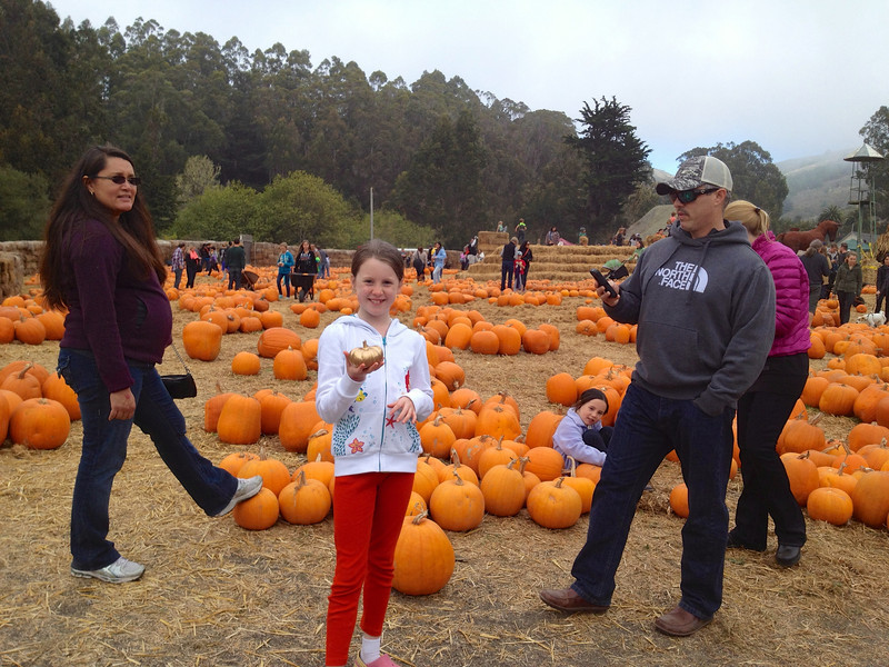 The family all doing their thing at Arata Farms.