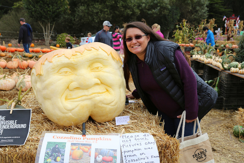 Timber with a big carved pumpkin.