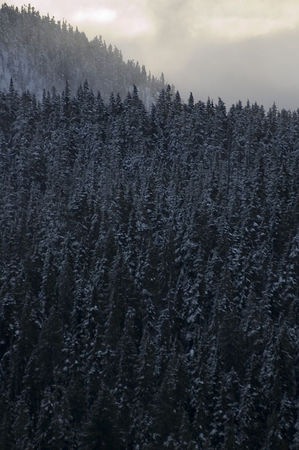 2 mount washington snow_20