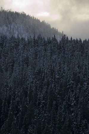 2 mount washington snow_19