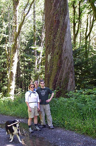 CCC Road, June 2013.  Mary Alice, Tom, Miles, and big twisty tree.