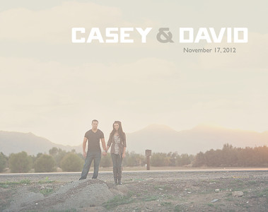 casey-david album