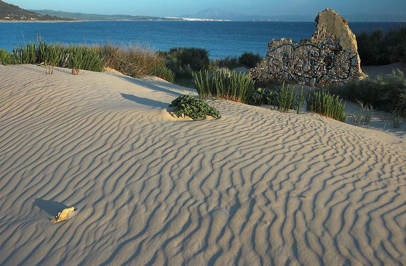 Dunes at Gibraltar Strait, Tarifa