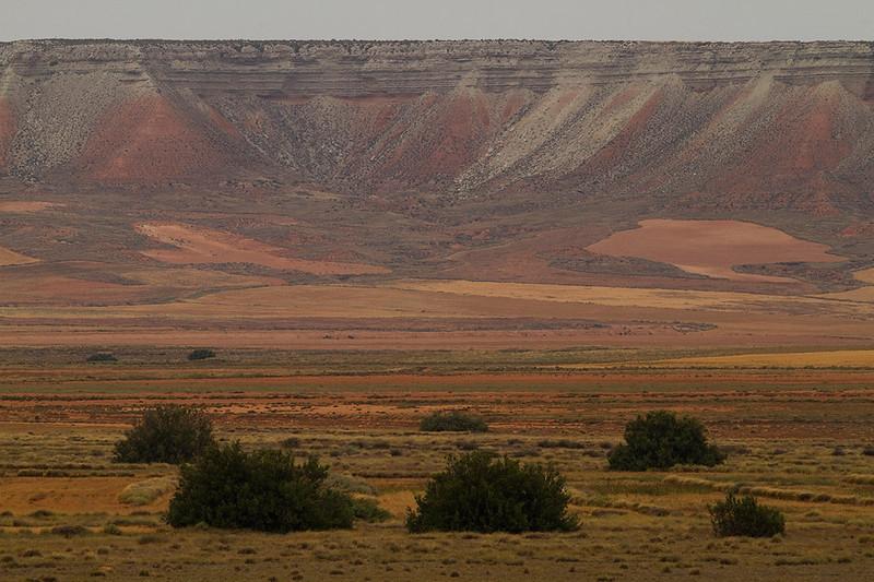 Aragonese Steppe