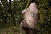 El viejo espíritu del Bosque