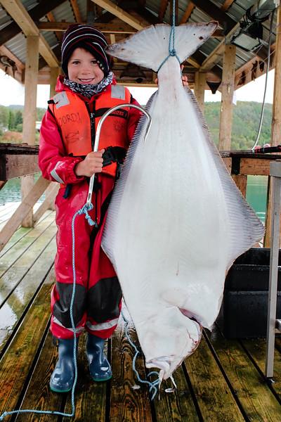 27 kg Atlantic Halibut (Hippoglossus Hippoglossus) caught in Northern Norway  08/2015