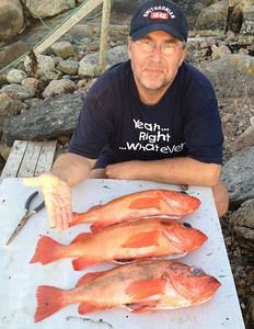 The Redfisch: a jolly fellow!
