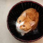 Dave Hochanadel's photo