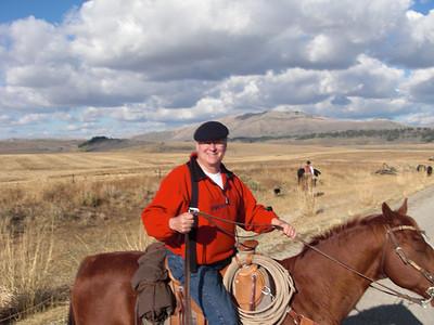 cattledrive2010