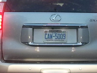 caw sightings