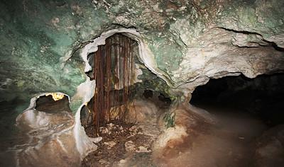 Bat Cave Roots