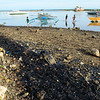 Cebu oil spill damage