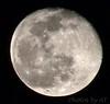 Moon <br /> 2004-02-07