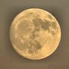 Moon over Riverlands <br /> 4:36 pm <br /> Riverlands Migratory Bird Sanctuary