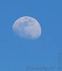 da Moon <br /> 2006-04-08