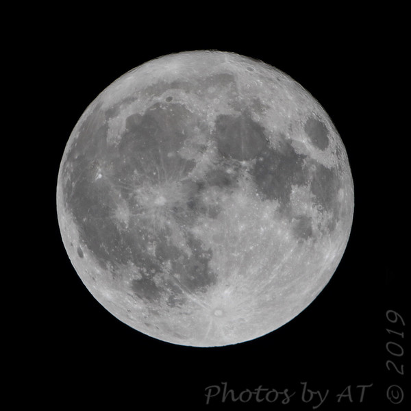 Harvest Moon <br /> 10/13/19