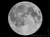 Blue Moon tomorrow <br /> This is day before <br /> 2015-07-30 23:22:40 <br /> 500mm + 1.4x