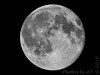 Blue Moon <br /> 2015-07-31 23:05:03  <br /> 500mm + 1.4x