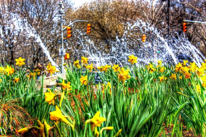 Columbus Circle  -- click image for larger view