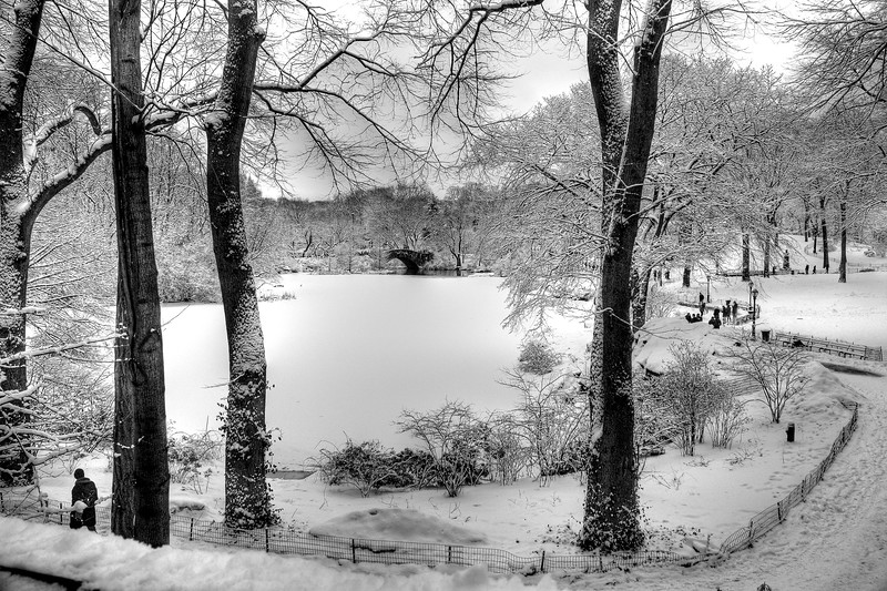 The Pond, Central Park  -- click image for larger view