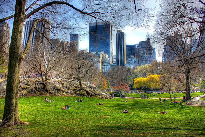 Central Park  -- click image for larger view